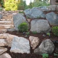 1508O - Moss Boulder Granite Boulder Siloam Stone Step